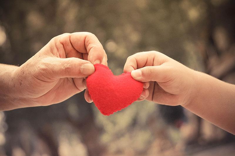 SPCC-healing-families